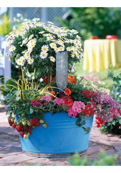 Nawadniacz butelkowy do kwiatów doniczkowych XL, pojedynczy