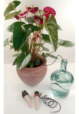 Blumat Classic XL dla roślin domowych, pojedynczy